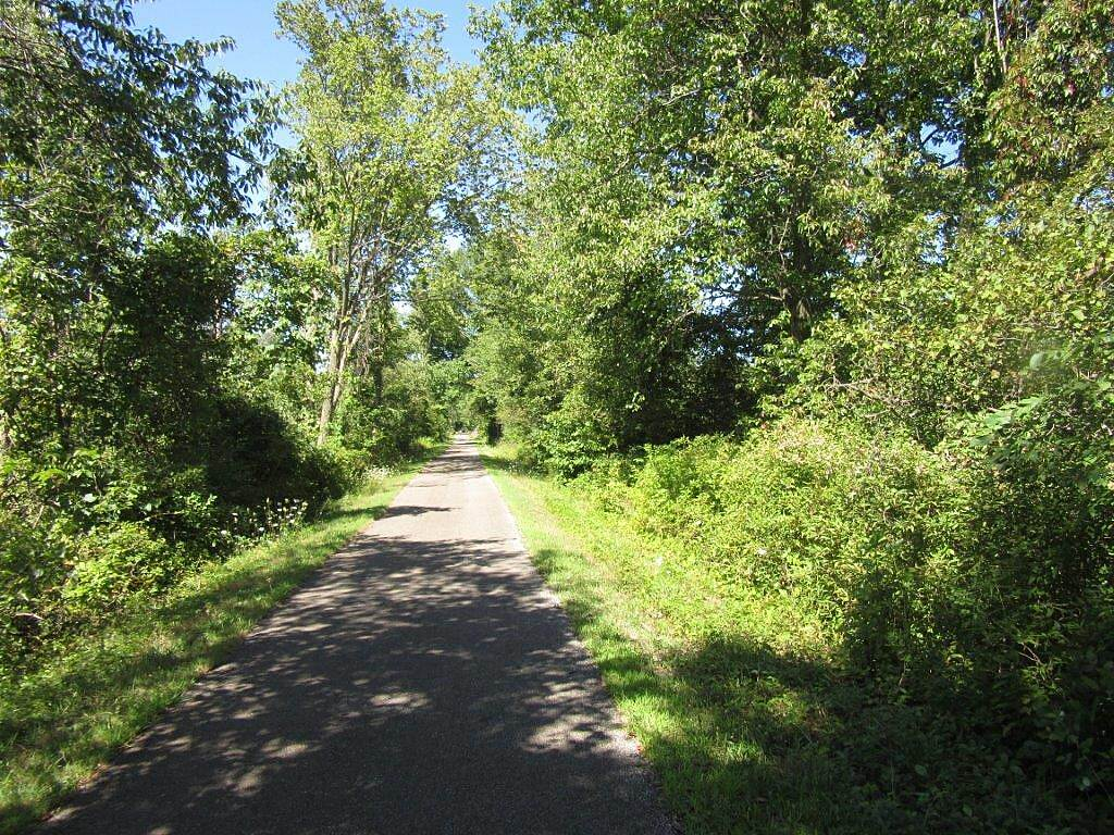 Bike and Hike Trail Woodsy area Nice wooded area along the trail