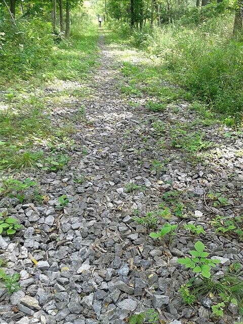 Black Diamond Trail Black Diamond - lots of rocks 3 pictures that I'm submitting are all about 2 - 3 miles in from my starting point on this trail, which I got on around Gorge Road.  Very overgrown trail, grass, weeds, rocks, and mud.
