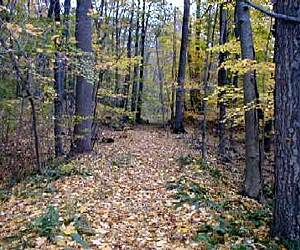 New Jersey Walking Trails Trail Maps Traillink