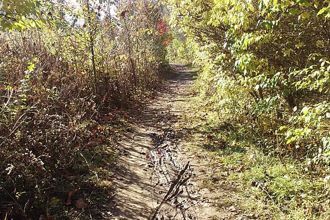 Blacklick Creek Greenway Trail Nov 2015 Northbound, rough unpaved section between Abbies Lake Apartments and Turnberry Retreat