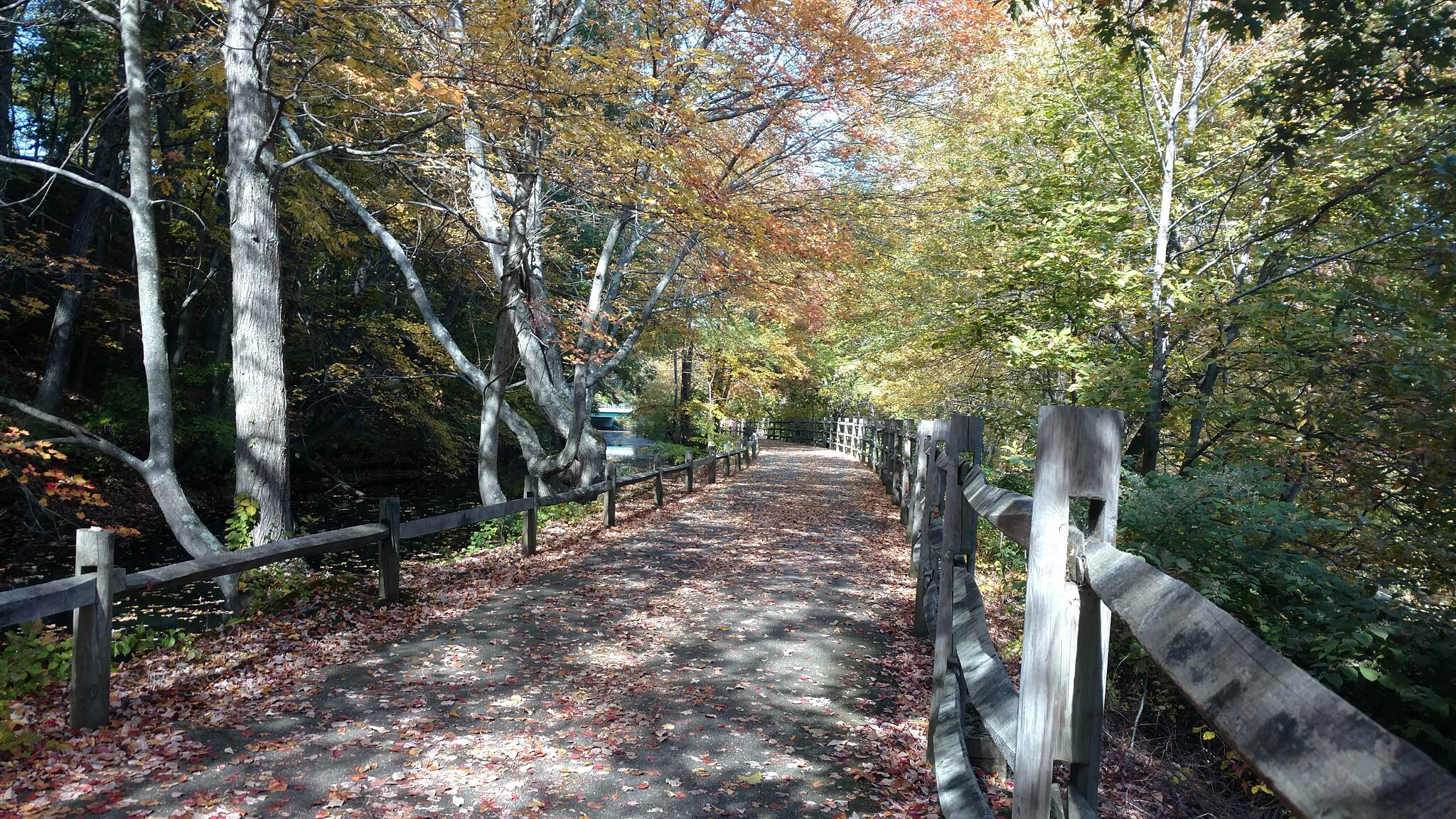 Blackstone River Greenway (RI) SouthOfMartinSt Autumn 2016!