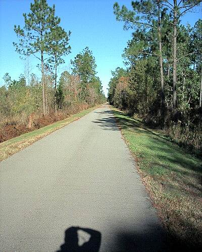 Blackwater Heritage State Trail Typical View Looking north after leaving Milton.