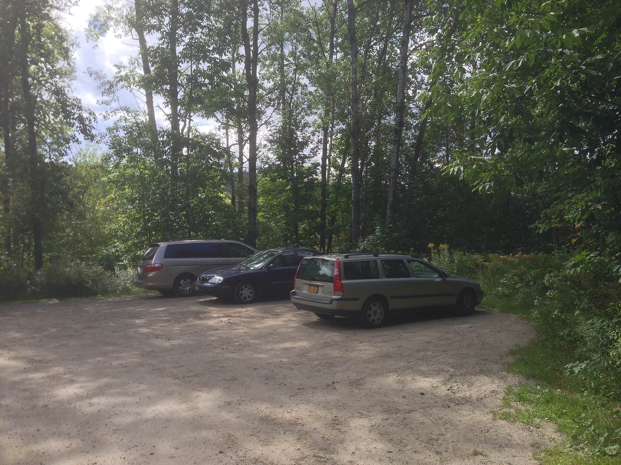 Bloomingdale Bog Trail Parking spaces are limited