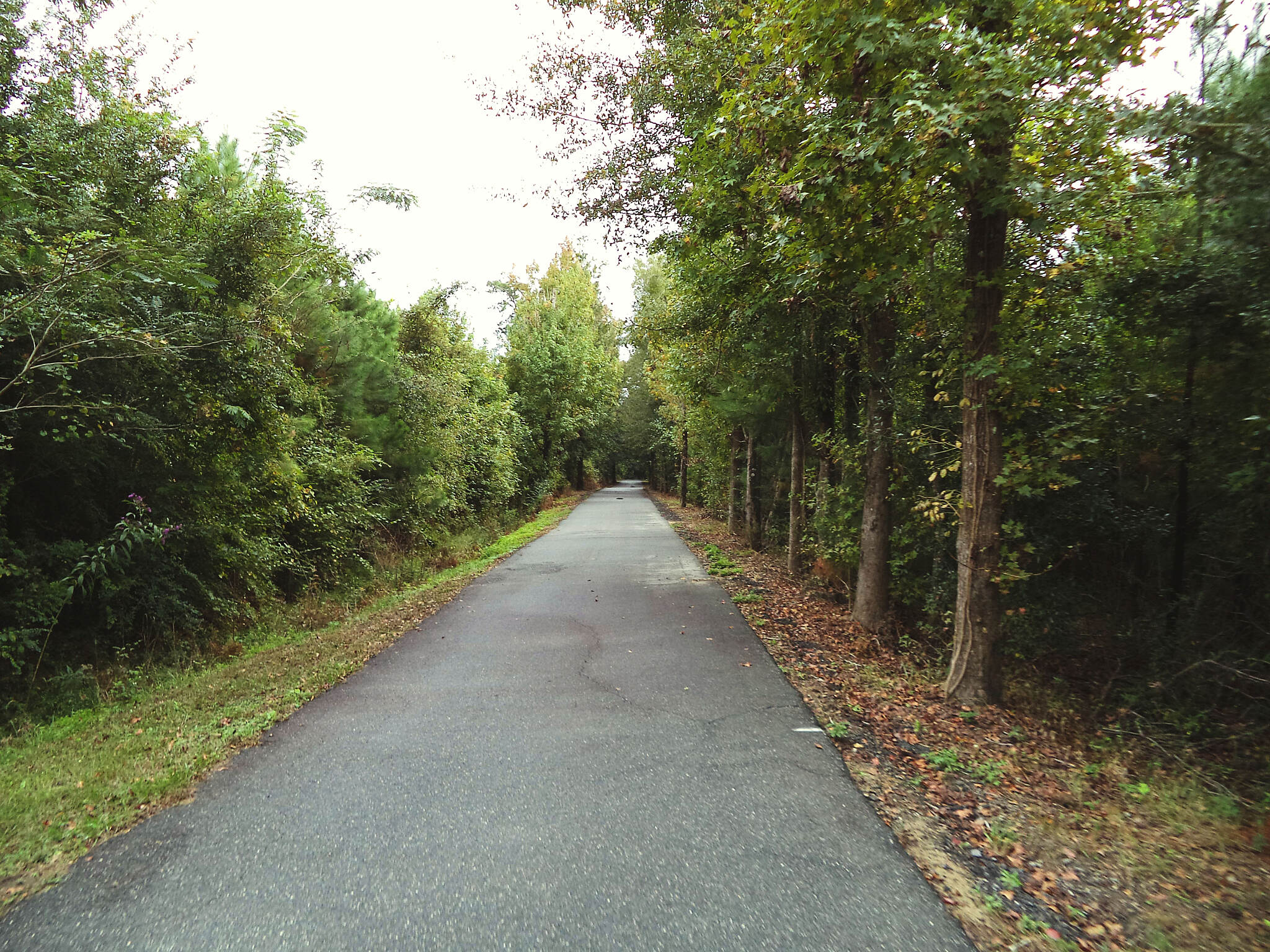 Blountstown Greenway Bike Path Blountstown Greenway Bike Pat Photo submitted by: billbrockman