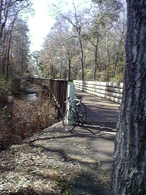 Blountstown Greenway Bike Path Wooden slat bridge over creek. Photo taken in February.  Temps in high 60s.