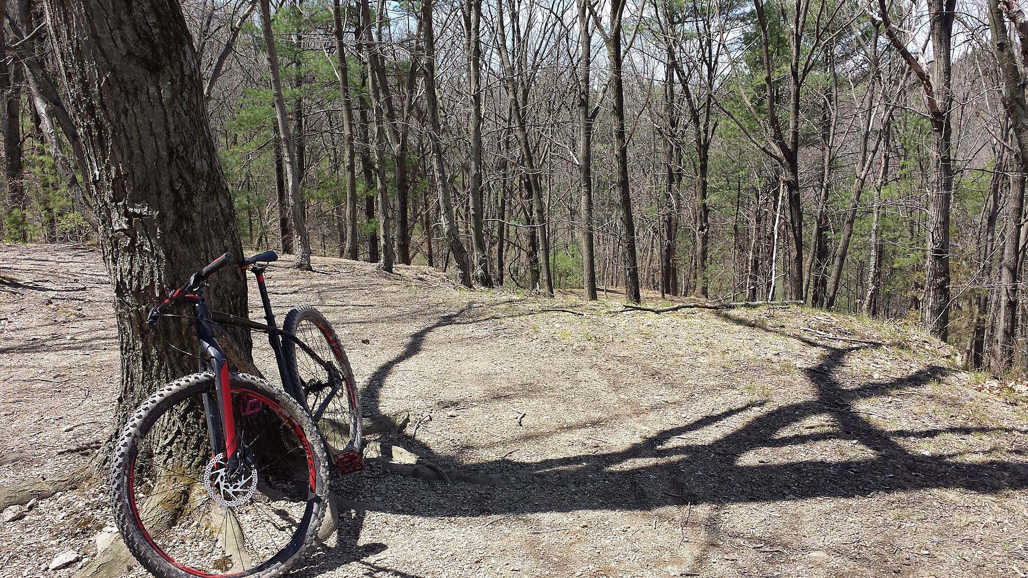 Blue Marsh Lake Multi-Use Trail crave sl29