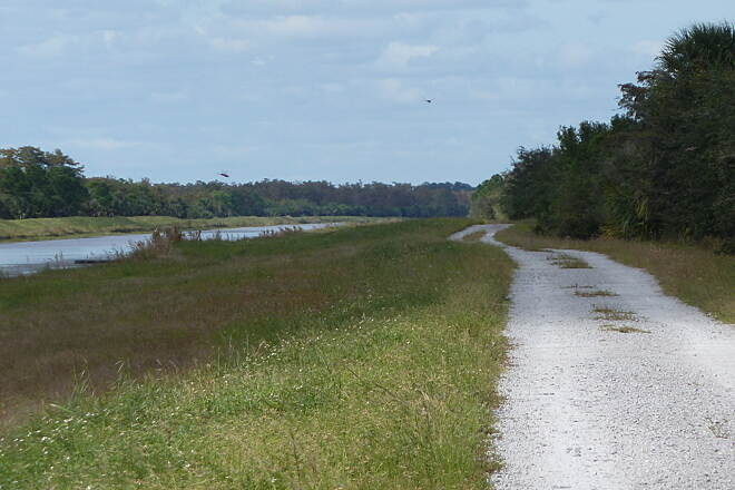 Bluegill Trail Bluegrass Trail Great ride along the canal with abundant bird life and lush green Florida trees.