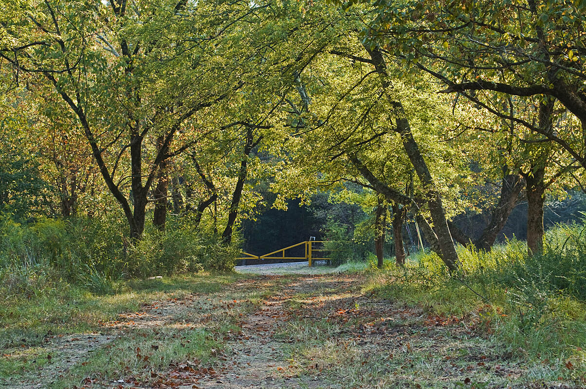 BMRR South Trail BMRR Meadow in the Fall Photo Credit: Jeff Newman