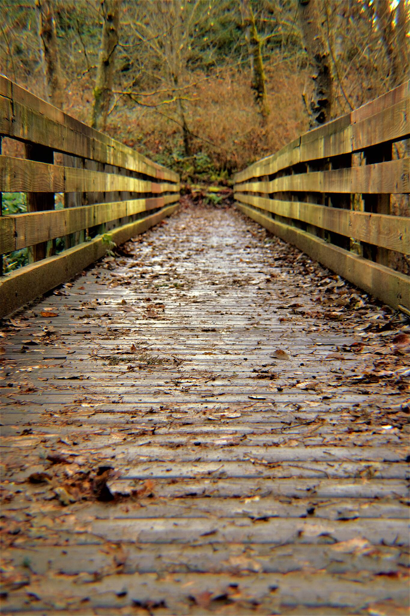 BPA Trail Bridge Water This is a very nice place to walk and clear your head.