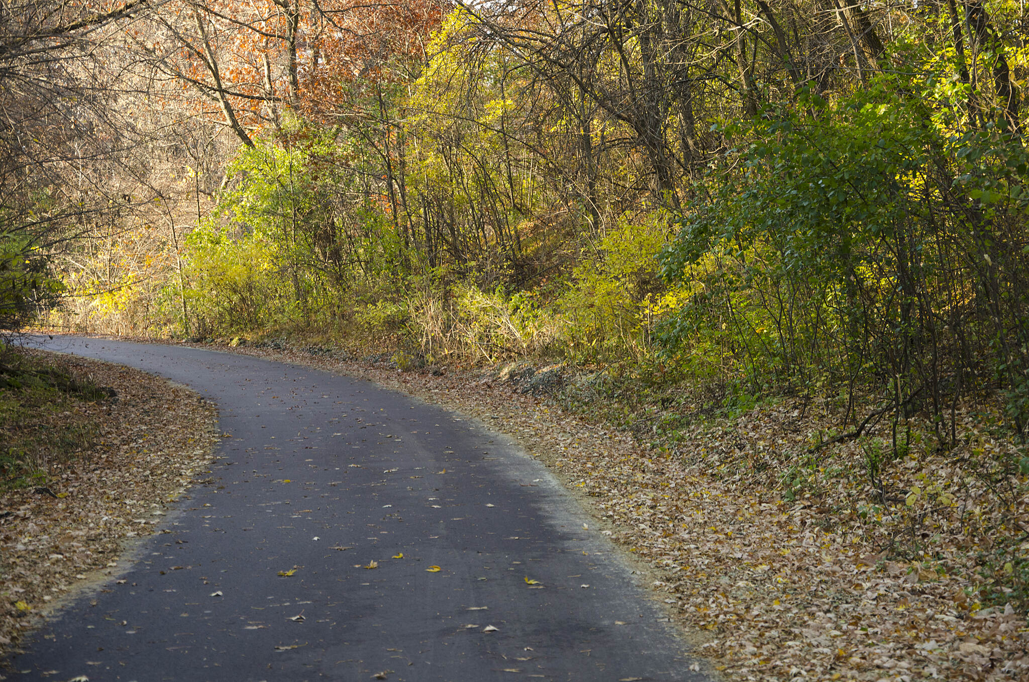 Brown's Creek State Trail The trail in Stillwater Photo courtesy Minnesota Department of Natural Resources.