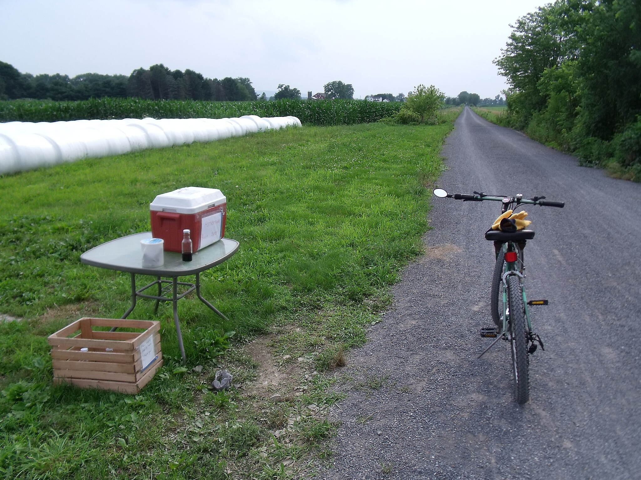 Buffalo Valley Rail Trail The Homemade Root Beer Stand Ice cold Amish made homemade root beer is available every day from May through September in small bottles or half-gallon jugs at the farm at Trail Milepost 4.