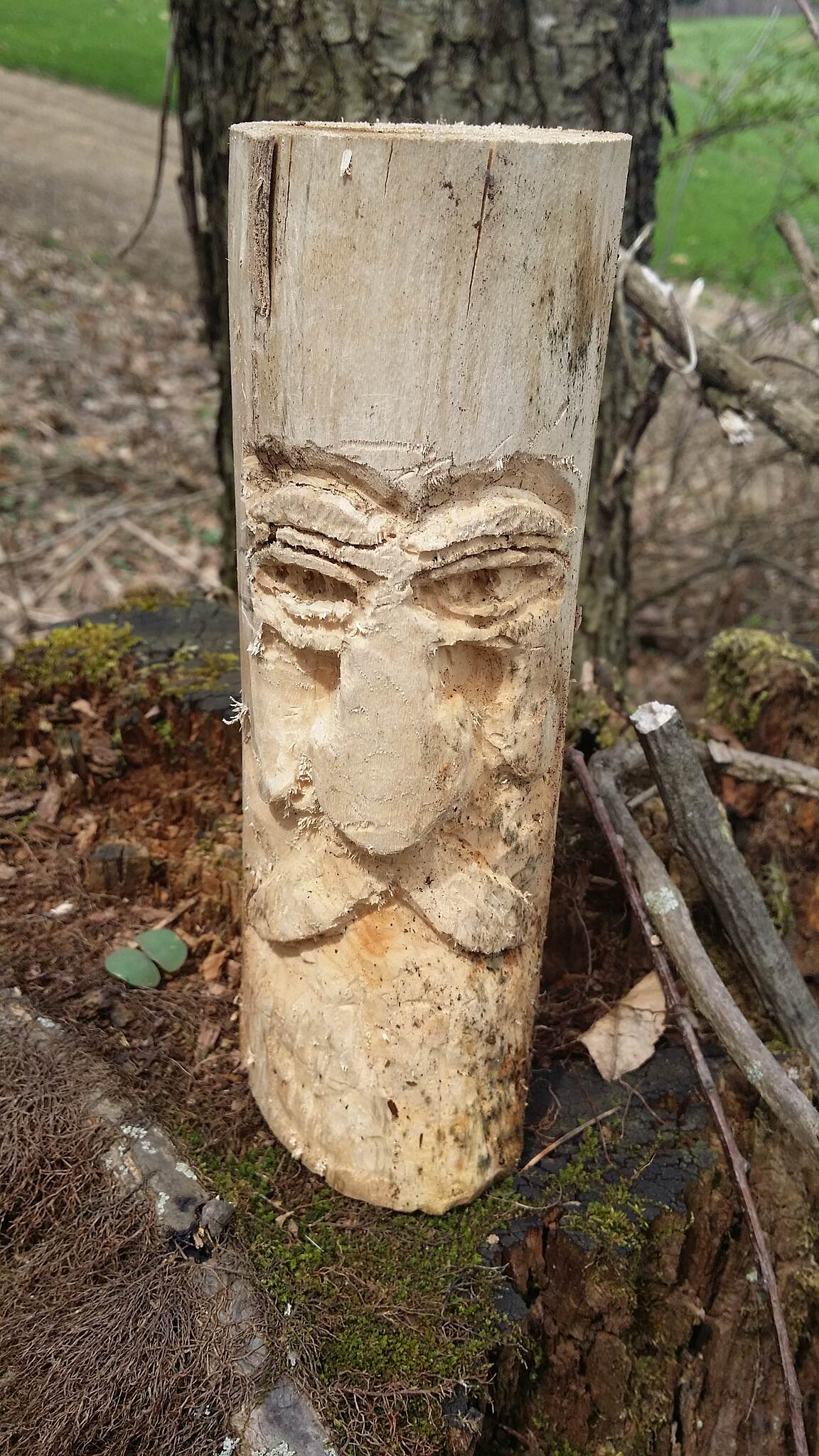 Butler-Freeport Community Trail Face in the wood My Dad and I found this treasure when riding our bikes on this beautiful trail. Someone had carved this face in a piece of wood. We found this on a tree trunk by the golf course.