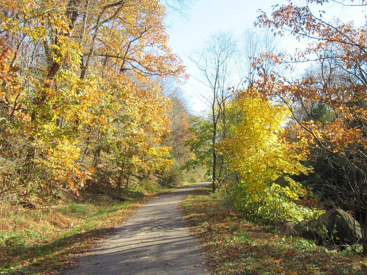 Butler-Freeport Community Trail Pretty leaves Pretty golden leaves , Fall 2016
