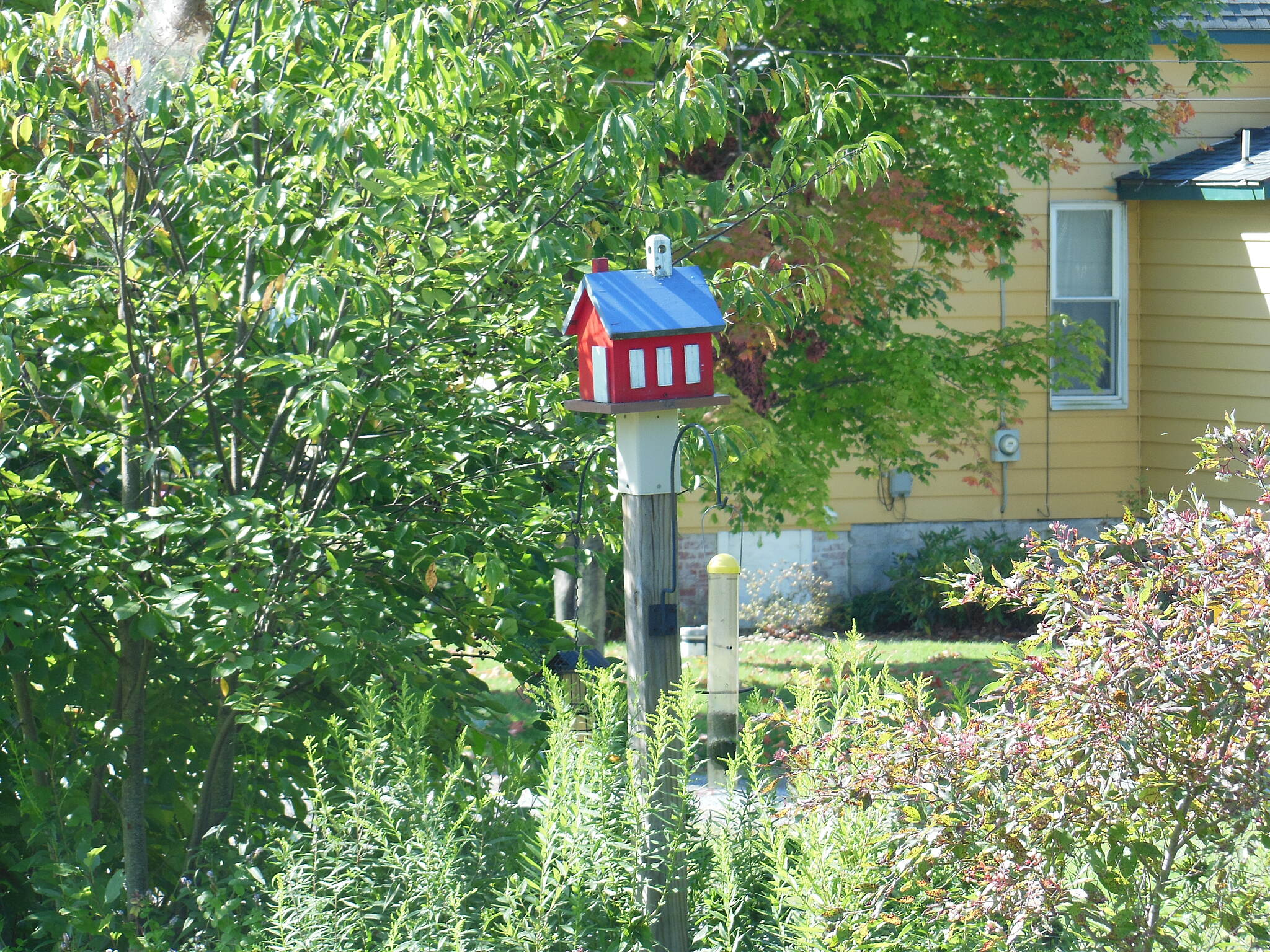 Butler-Freeport Community Trail Cool bird house.