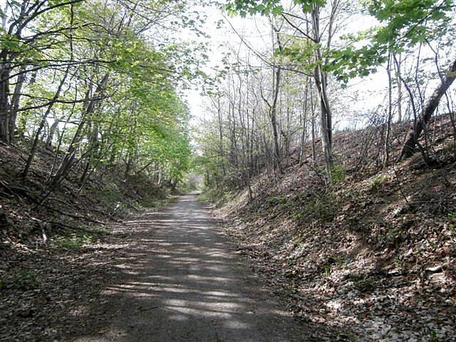 Butler-Freeport Community Trail Towards Cabot-May 2014 Original section towards Cabot