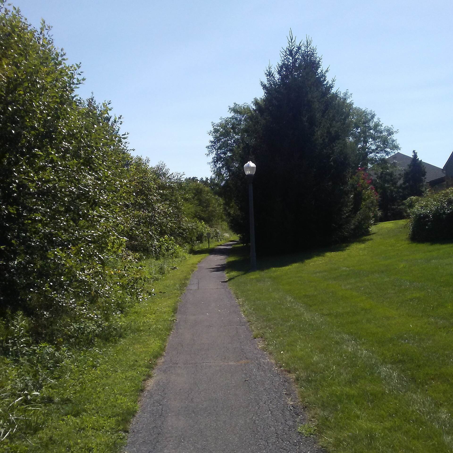 Butterfly Acres Trail Butterfly Acres Trail The trail forms the boundary between the wetlands, seen on left, and residential properties, seen on right, for most of its length.