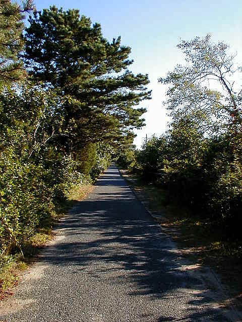 Cape Cod Rail Trail