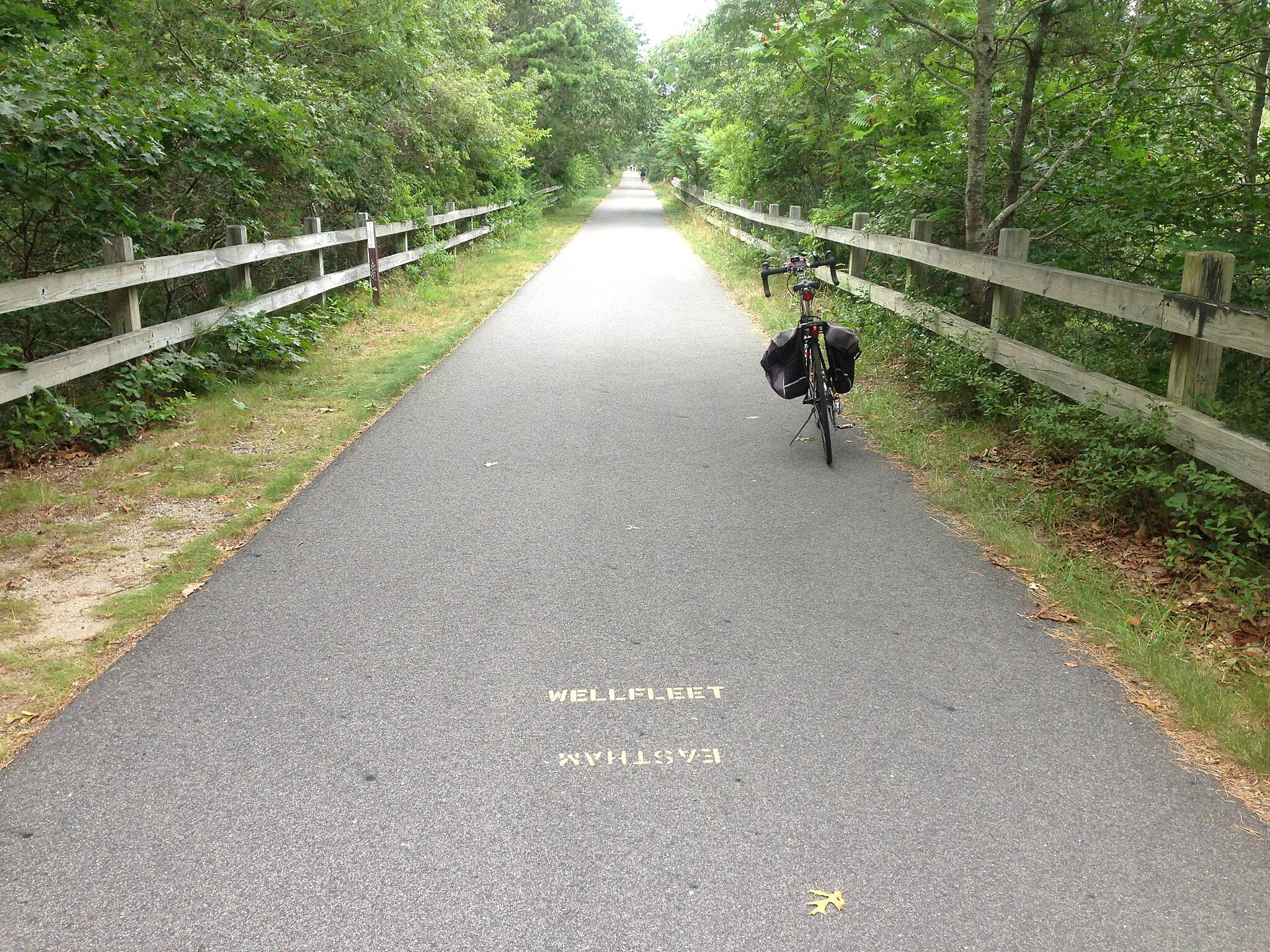 Cape Cod Rail Trail Eastham-Wellfleet border.
