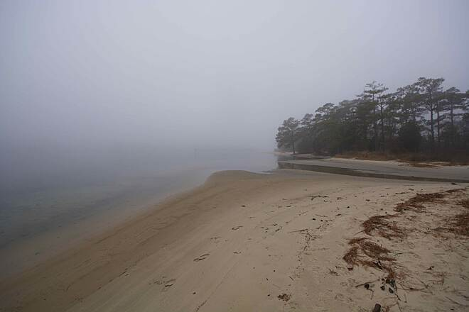 Cape Henry Trail In The Fog An early morning fog