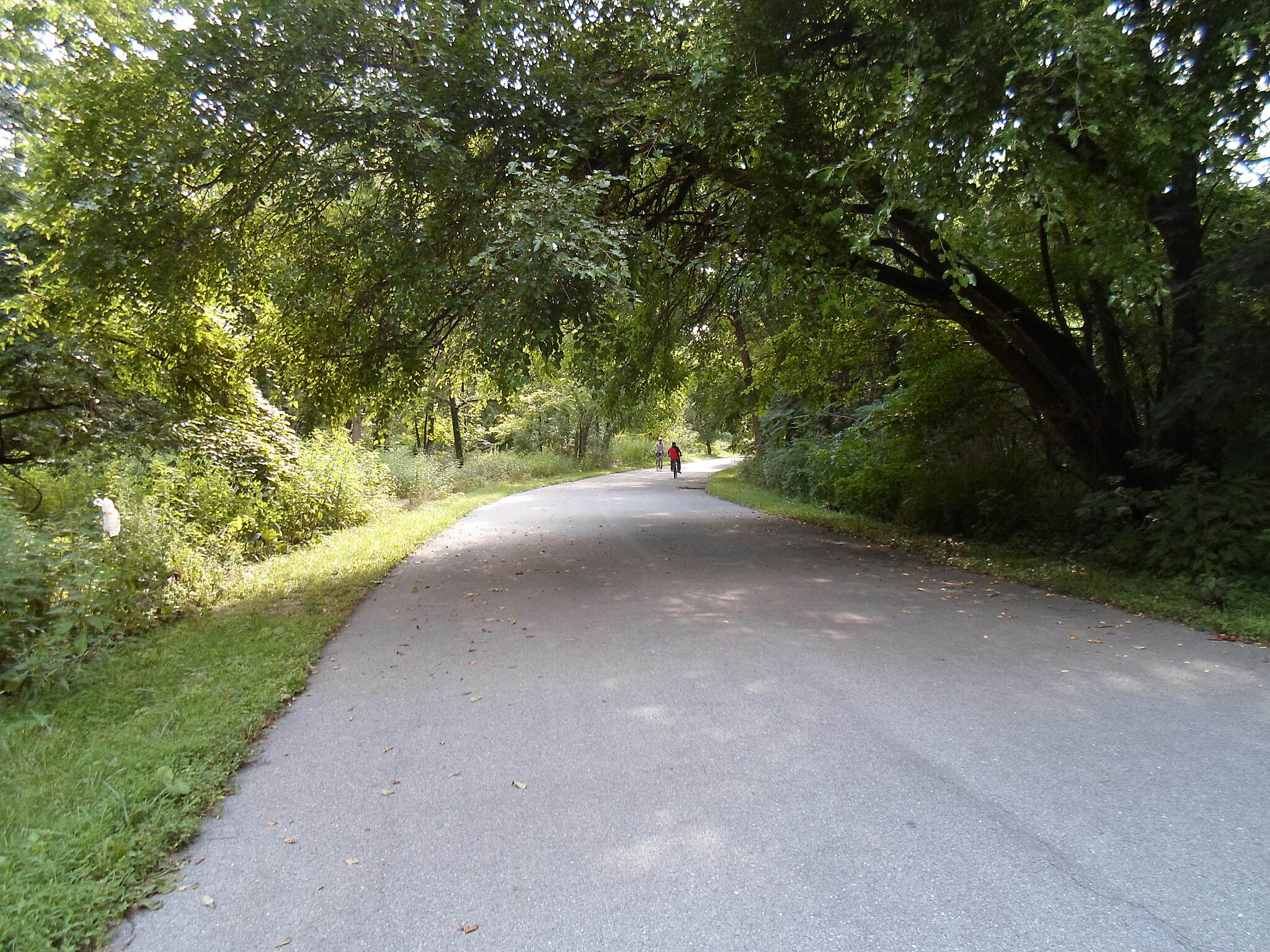 Capital Area Greenbelt Capital Area Greenbelt Cyclist riding through the woods on the south side of Harrisburg.