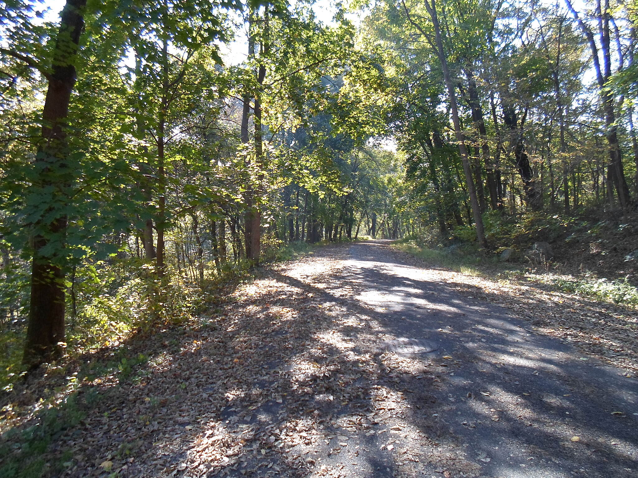 Capital Area Greenbelt Capital Area Greenbelt Following another abandoned road (formerly known as Cameron Park Drive) through the woods north of Paxtang.