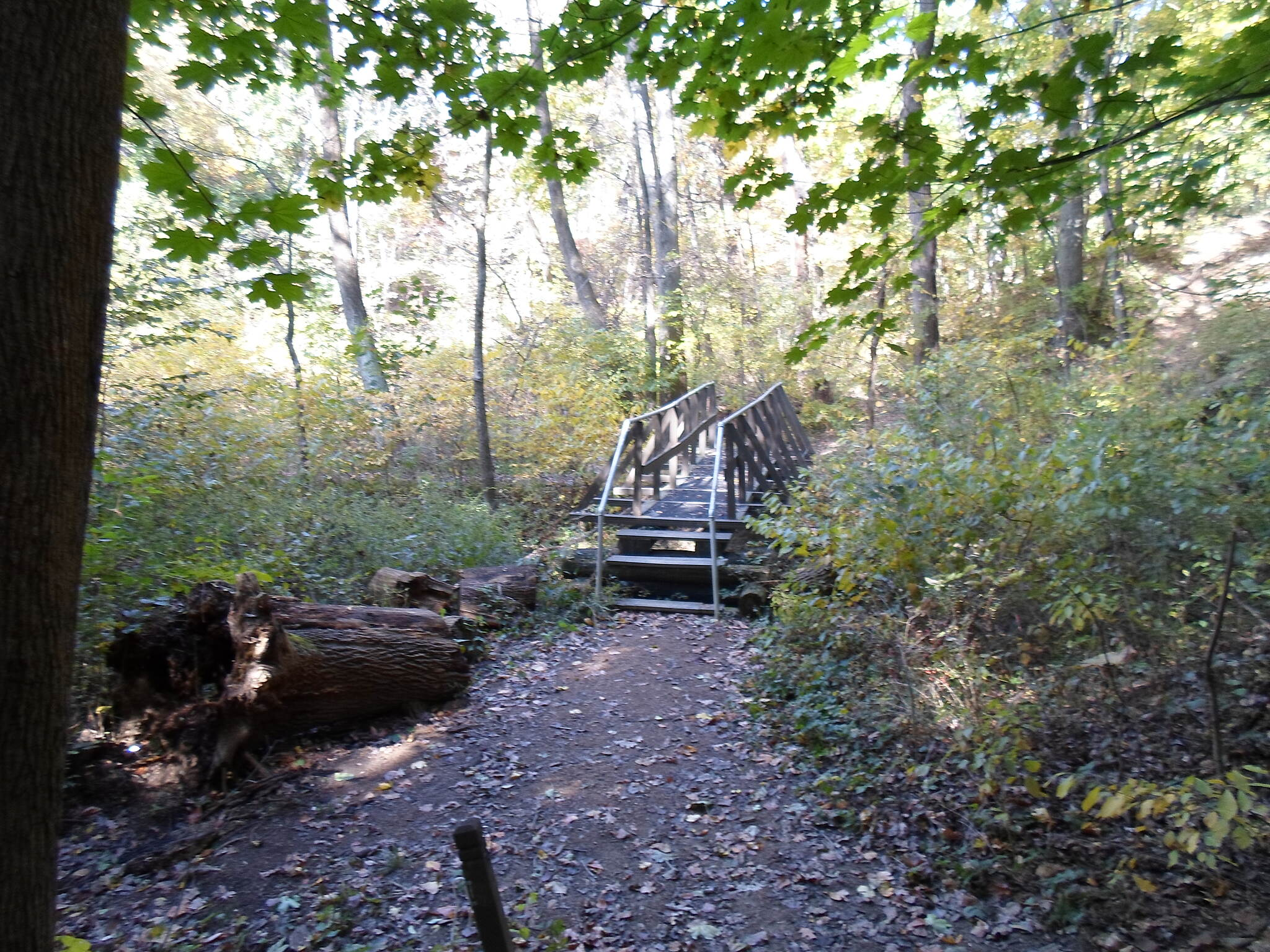 Capital Area Greenbelt Capital Area Greenbelt In addition to the main trail, there are also a few primitive footpaths in the 'greenbelt.' This wooden footbridge is along one of those paths that branches off the section between Paxtang and Pembrooke.