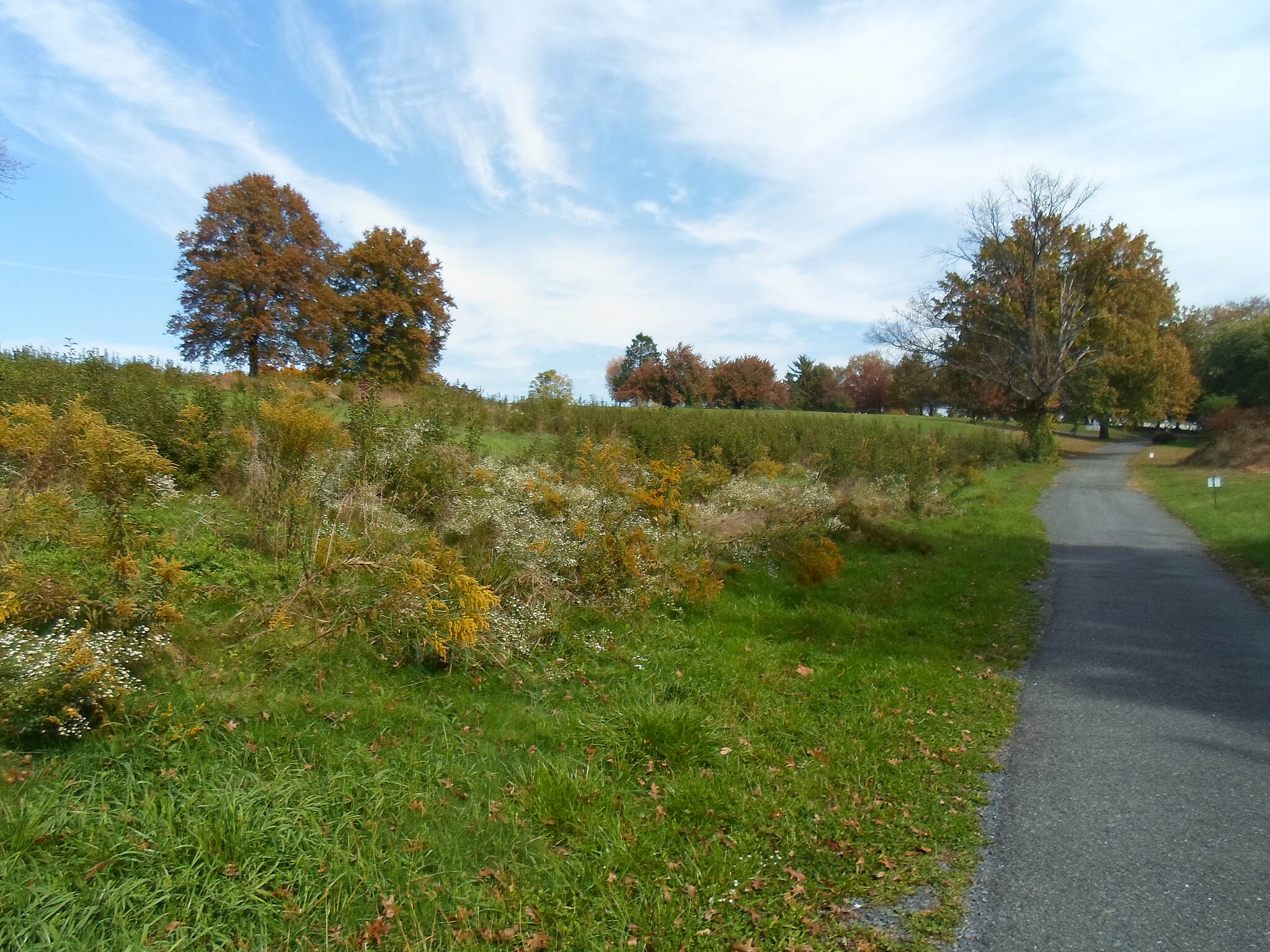Capital Area Greenbelt Capital Area Greenbelt Meadows on the north end of the city, west of Edgemont Road.