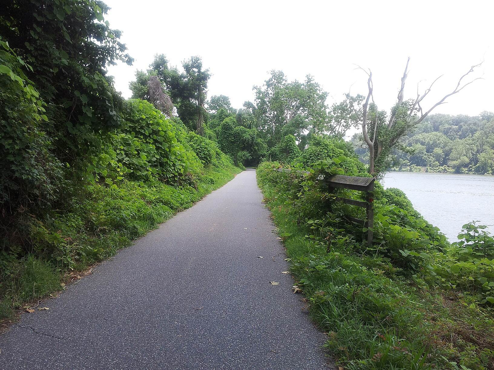 Capital Crescent Trail View of Potomac off Crescent This is just one of the views of the Potomac from the crescent trail