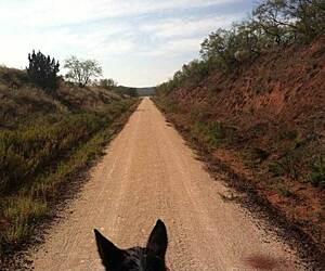 Texas Horseback Riding Trails & Trail Maps | TrailLink
