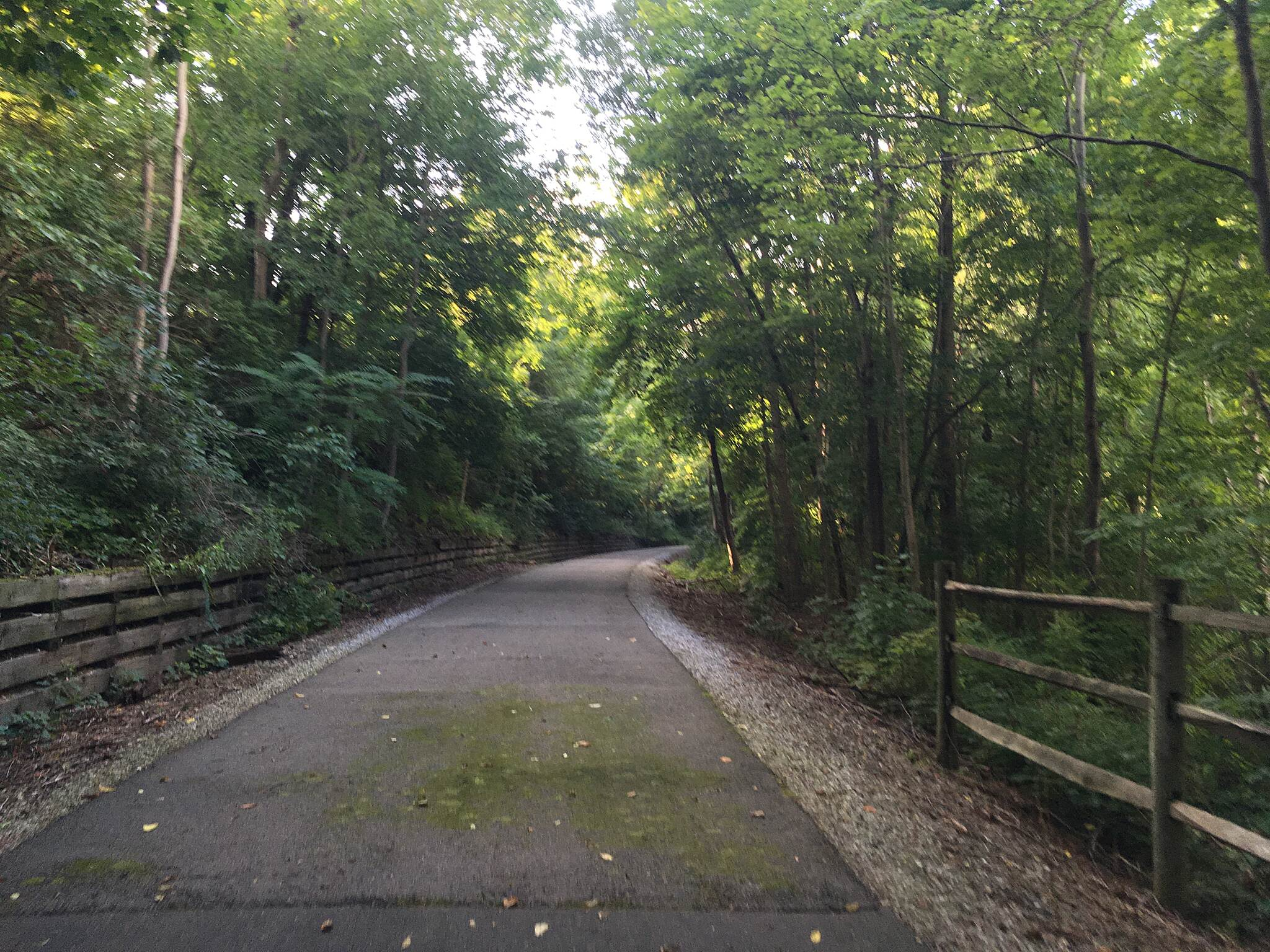 Cardinal Greenway just north of Richmond