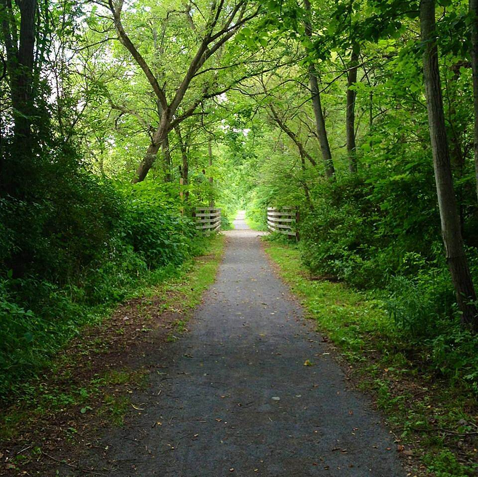 Catharine Valley Trail My son took this picture! Beautiful!!