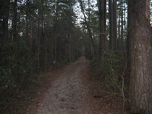 Cathedral Aisle Trail
