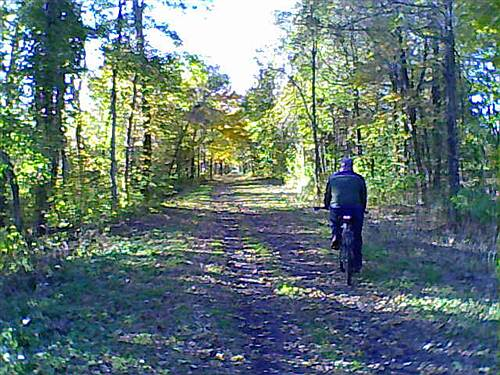 Cato-Fair Haven Trail Cayuga County Trail Fall riding