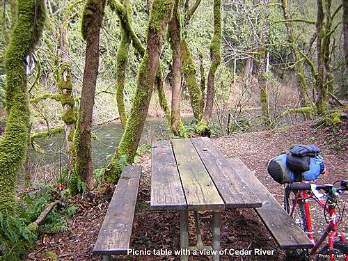 Cedar River Trail (WA) Cedar River Trail Picnic table along Cedar River Trail