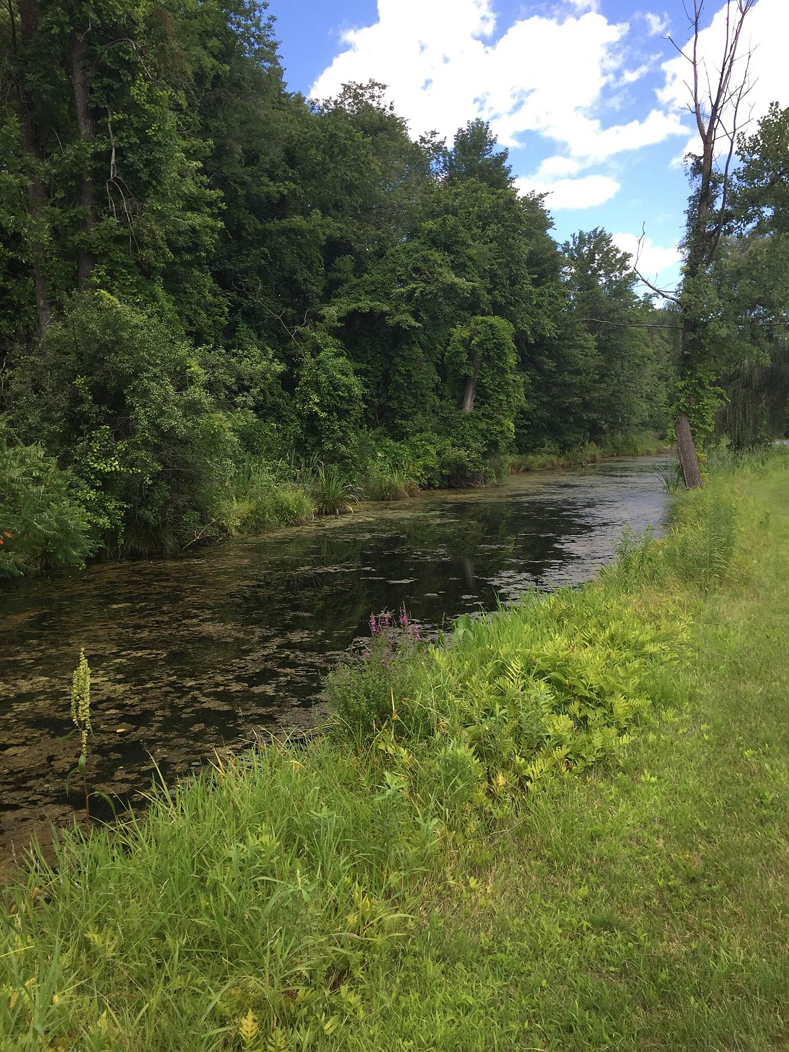 Champlain Canalway Trail: Glens Falls Feeder Canal Trail Champlain Canalway Trail: Glens Falls Feeder Canal Trail