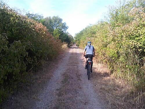 Chaparral Rail Trail Mowed Trail near Ladonia This section right outside Ladonia had been freshly mowed---smooth sailing!