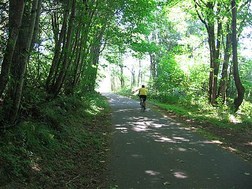 Chehalis Western Trail Near Woodard Bay Between 41st and 46th Ave NE