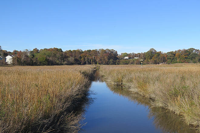 Chesapeake Beach Railway Trail Wetlands Channel The channel leading to Lake Moffat.