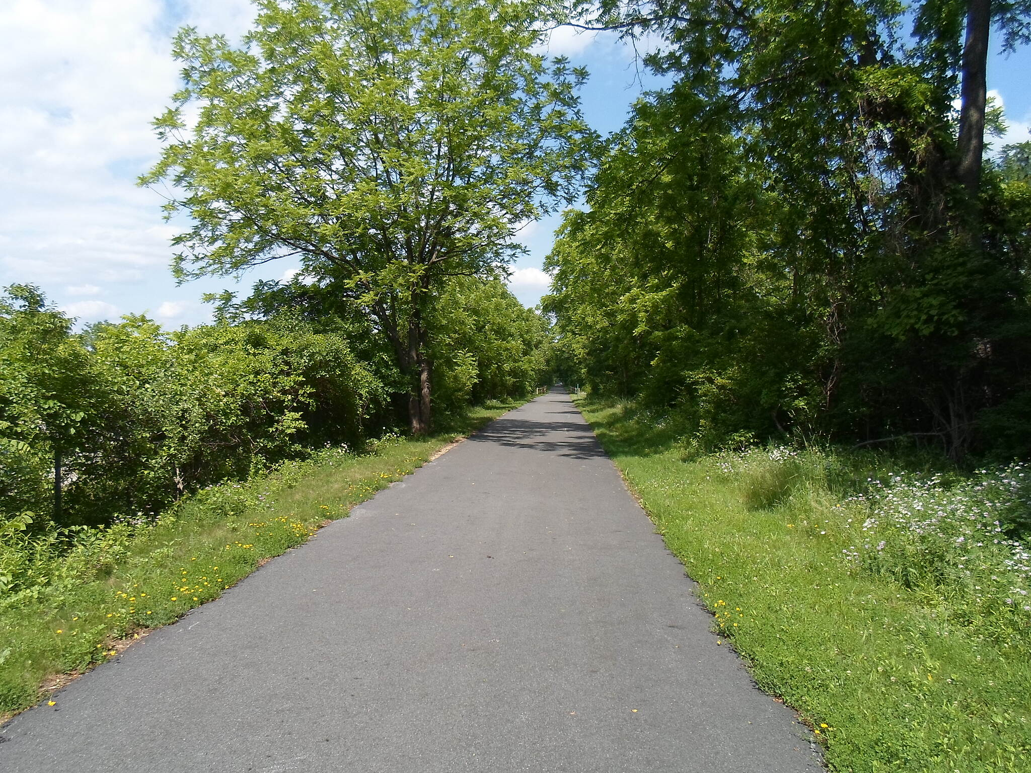 Chester Valley Trail Chester Valley Trail Trail in early summer; taken June 2015.