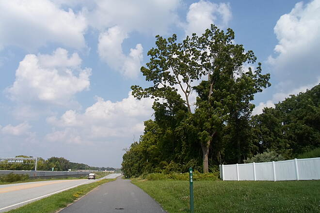 Chester Valley Trail Chester Valley Trail Paralleling Route 202 (far left) and Matthews Road (center) east of Uptown Worthington apartments. Taken July 2015.
