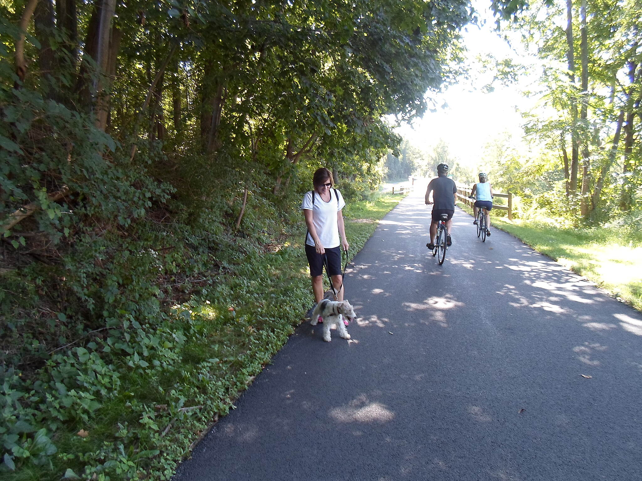 Chester Valley Trail Chester Valley Trail This woman and her dog were enjoying a stroll along the trail immediately east of the Valley Road bridge. Taken Sept. 2015.