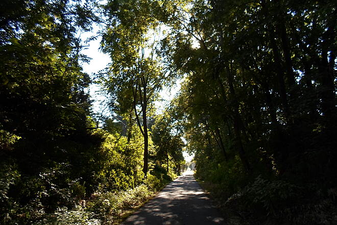 Chester Valley Trail Chester Valley Trail More late summer shade on the section of trail west of Valley Forge Road in Tredyffrin Twp. Taken Sept. 2015.