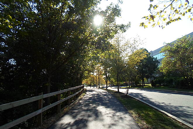Chester Valley Trail Chester Valley Trail Afternoon sun on a warm late summer on the trail near Chesterbrook Blvd. Taken Sept. 2015.