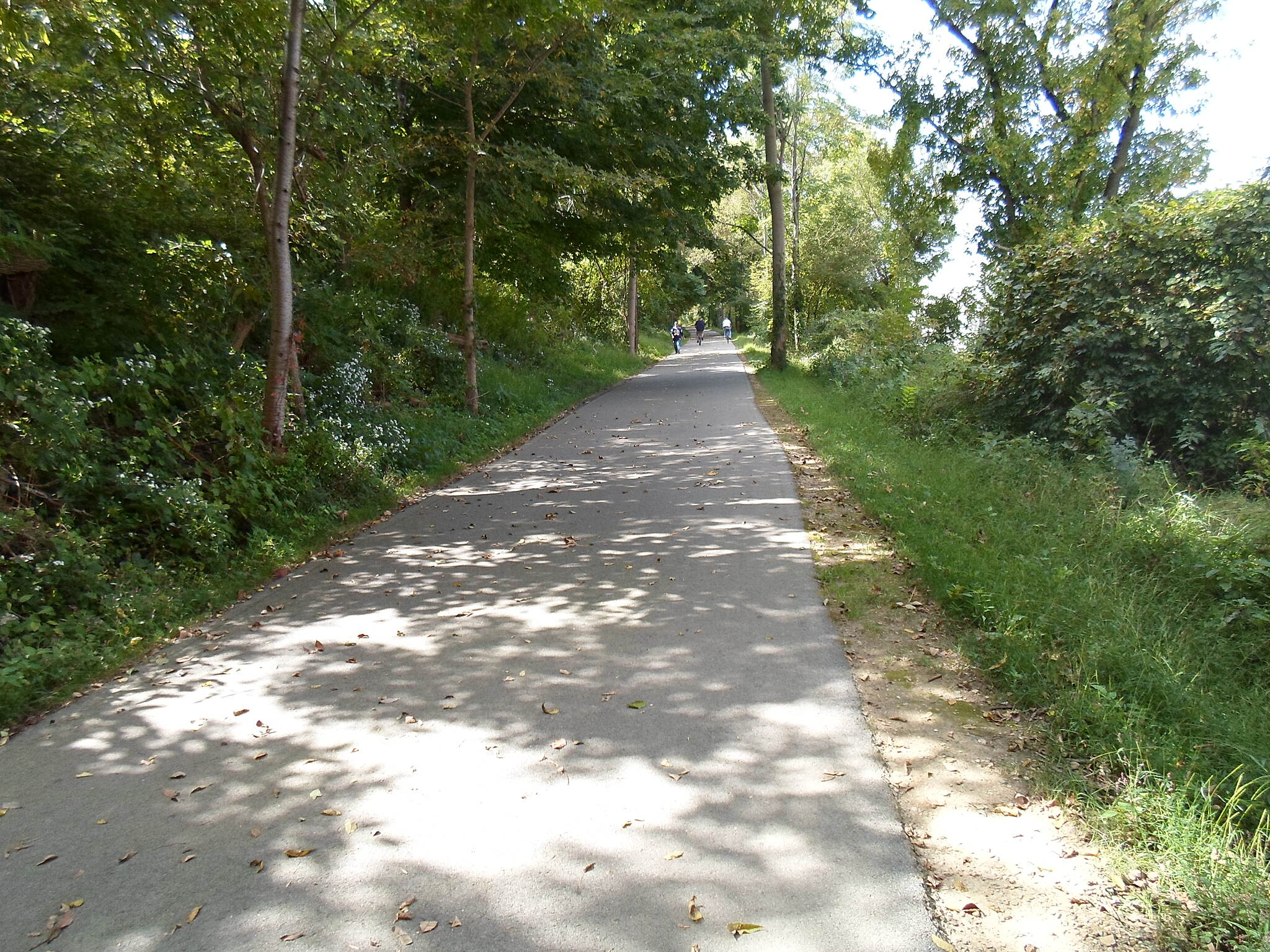 Chester Valley Trail Chester Valley Trail The trail is nicely shaded near the Route 401 crossing.