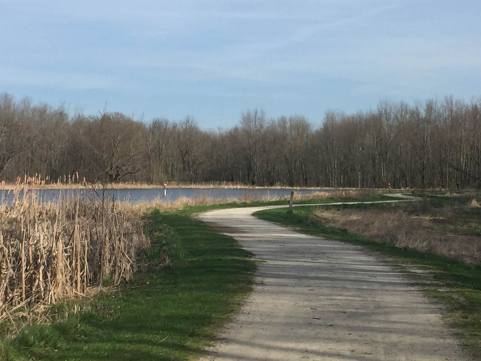 Chippewa Inlet Trail Lakeside Trail Loop in Buckeye Woods Park. The trail skirts a small lake in the northern most trail loop in Medina's Buckeye Woods Park.  April 12, 2017.