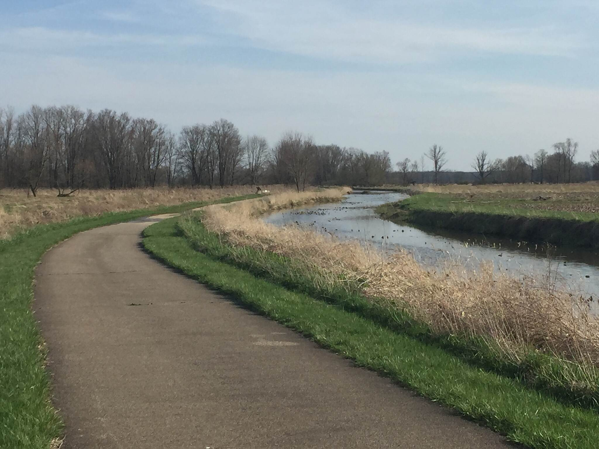 Chippewa Inlet Trail The Meandering Inlet The trail parallels the Inlet Creek that feeds Chippewa Lake in Medina County, Ohio.  This wetlands area supports numerous forms of wildlife.  April 12, 2017.