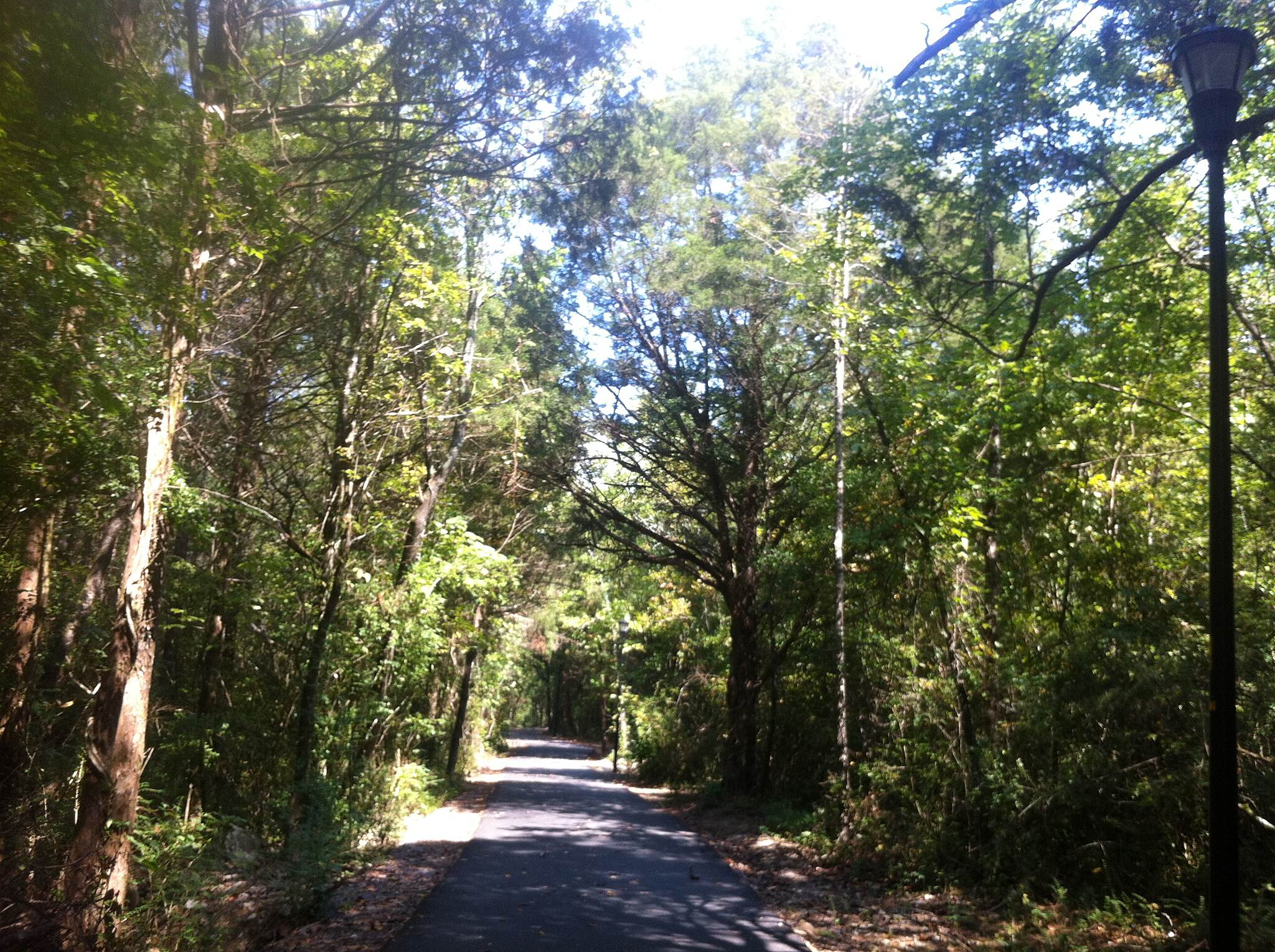 Cleveland/Bradley County Greenway greenway trail