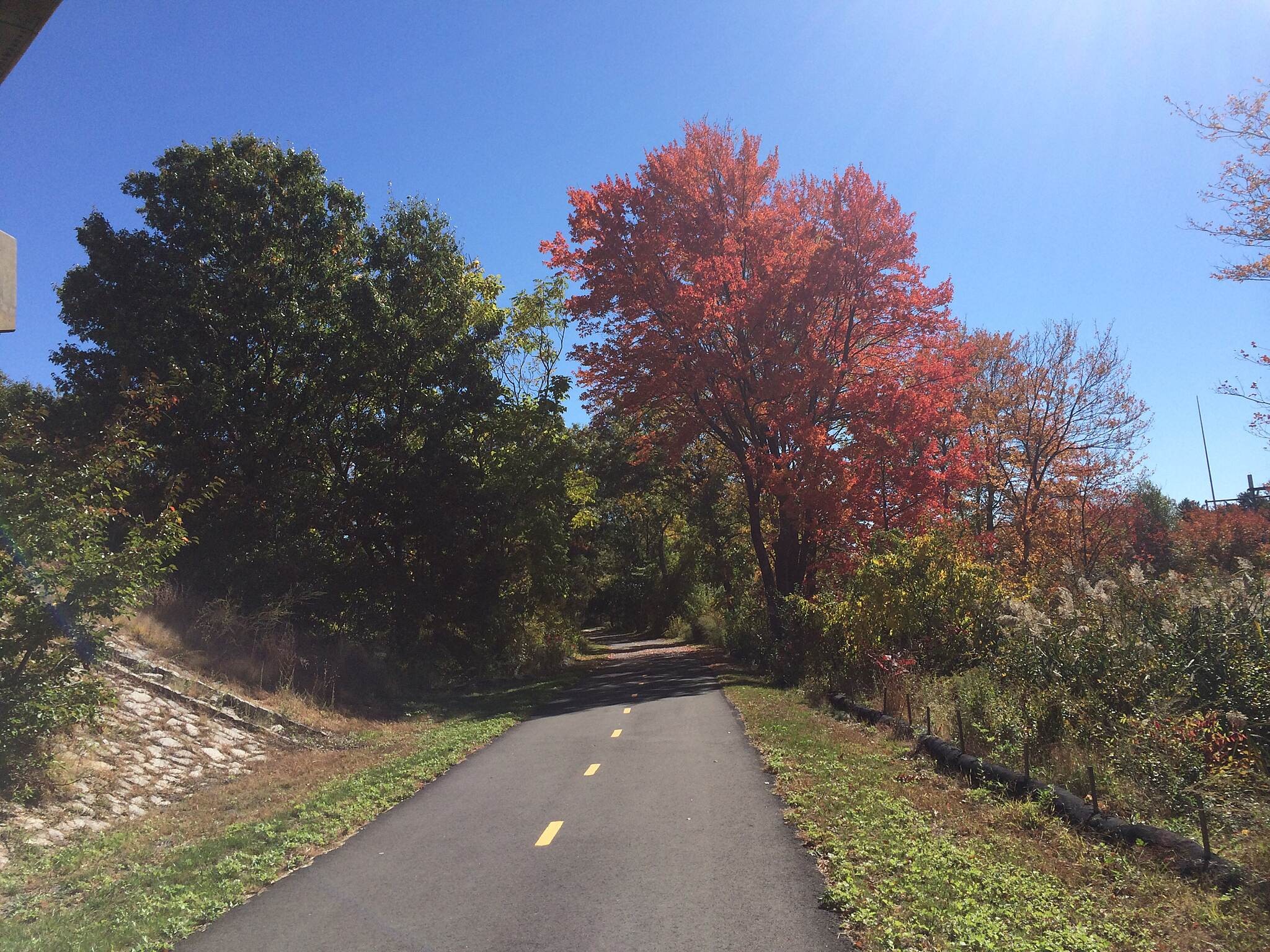 Cochituate Rail Trail colorful trees on the CRT.
