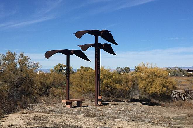 Colorado Riverfront Trail CRT-geese sculpture  Art on the Blue Heron section