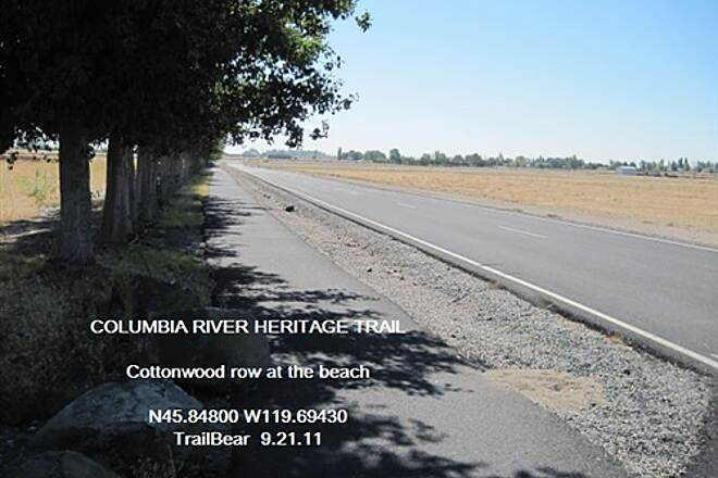 Columbia River Heritage Trail COLUMBIA RIVER HERITAGE TRAIL These cottonwoods take you to the beach.